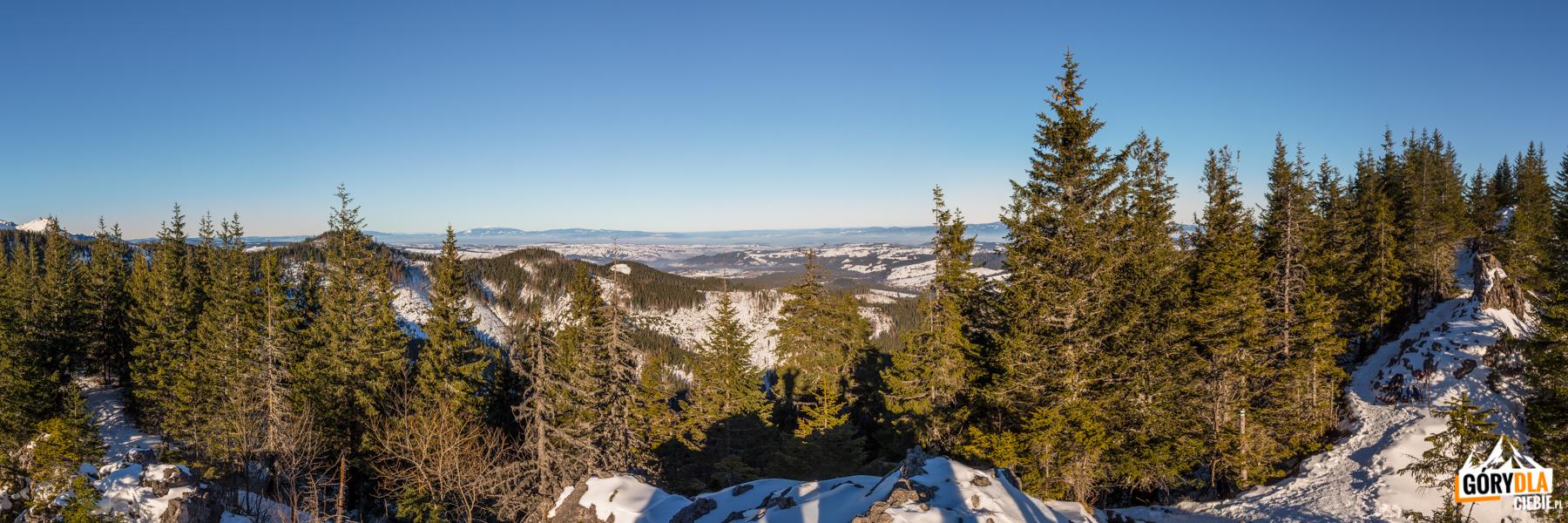 Widok na Podhale ze szczytu Gęsiej Szyi (1489 m)