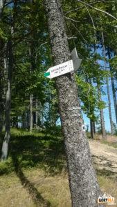 Zielony szlak do Sopotni wielkiej