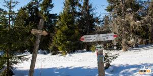 Droga na Małą Raczę (1153 m)