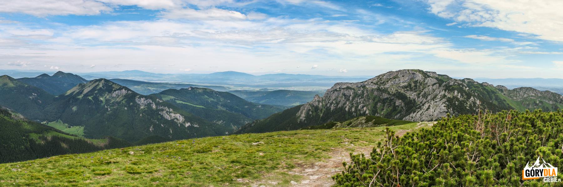 Widok zSuchego Wierchu Ornaczańskiego (1832 m) naBpbrowiec (1663 m) iKominarski Wierch (1829 m), nahoryzoncie widoczne Pilsko (1557 m) iBabia Góra (1725 m)