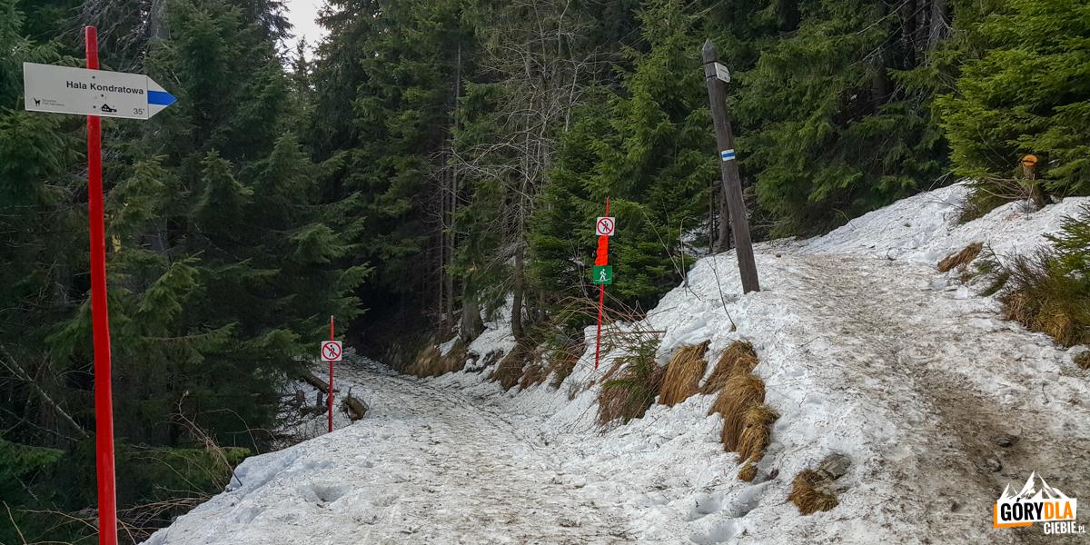 Oznaczenia traas narciarskich ipieszych naHalę Kondratową