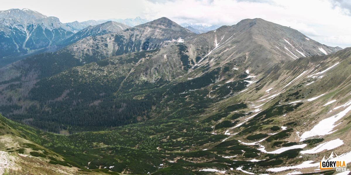 Widok zSiwego Zwornika naotoczenie Doliny Pyszniańskiej: Kamienista (2126 m), Smreczyński Wierch (2068 m) iTomanowy Wierch (1977 m) iCzerwone Wierchy