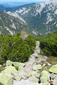 Zejście z grani Ornaku na Przełęcz Iwaniacką