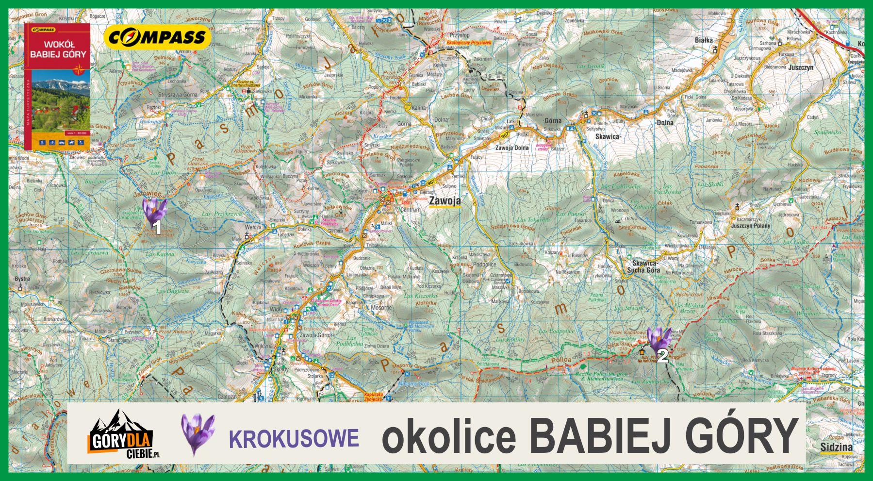 Mapa Krokusów - okolice Babiej Góry