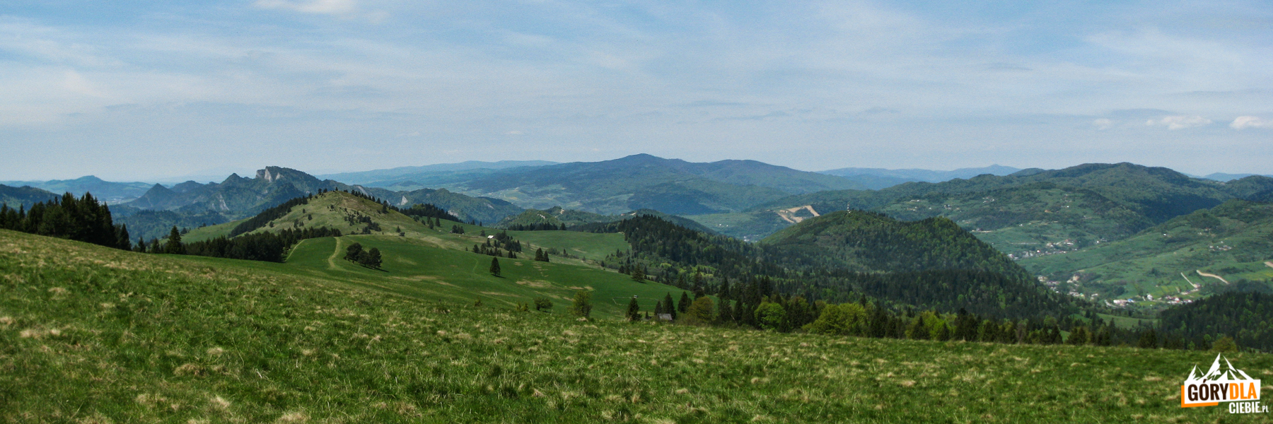 Widok zDurbaszki (934 m) - odlewej: Pieniny Właściwe (Trzy Korony), grań Małych Pienin (Wysoki Wierch), Gorce (Lubań), Beskid Wyspowy (Mogielica) iPasmo Przehyby