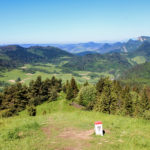 Widok z Wysokiego Wierchu (898 m) na Płaśnie (889 m) i Pieniny Właściwe (Trzy Korony)