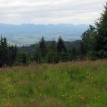 Panorama Tatr z Magurek 1108 m n.p.m