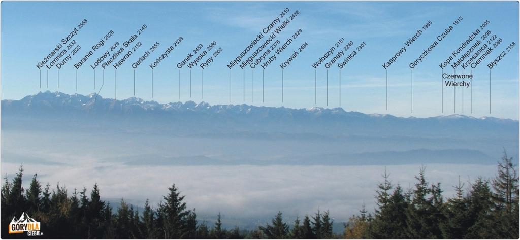 Panorama Tatr z Lubania