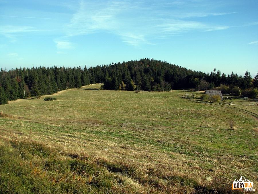 Wschodni szczyt Lubania, Średni Groń (1225 m n.p.m.)
