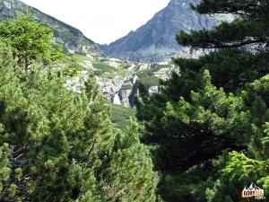 Dolina Młynicka (Mlynická dolina)