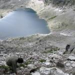 Zejście z Bystrej Ławki do Doliny Furkotnej