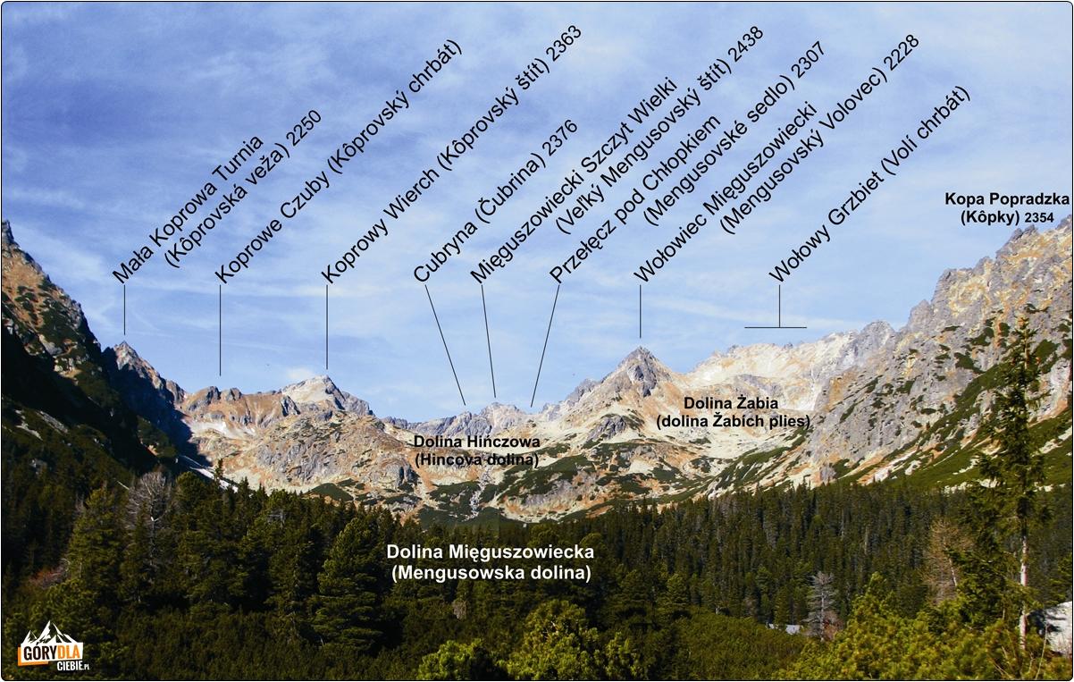 Otoczenie Doliny Mięguszowieckiej, panorama
