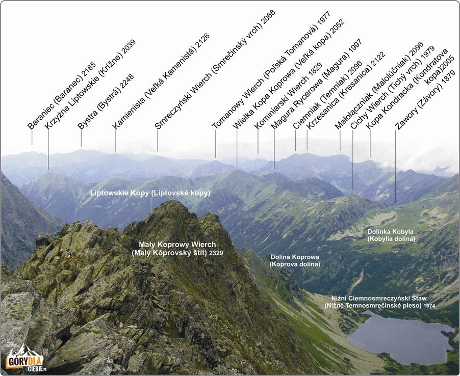 Panorama ze szczytu Koprowego Wierchu (na zachód)