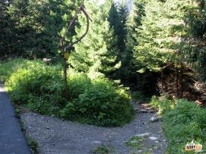 Szlaki przy Popradzkim Jeziorze