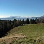 Tatry Wysokie widziane z Hali Skotarka