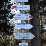 Rozwidlenie szlaków przed Halą Łabowską
