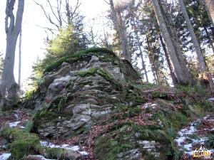 Wychodnia skalna na Wierchu nad Kamieniem