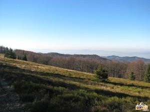 Widok z Hali Baranowskiej