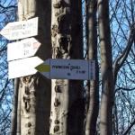 Przełęcz Bukowina