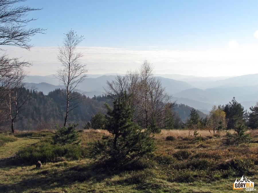Widoki z Jaworzyny Kokuszczańskiej