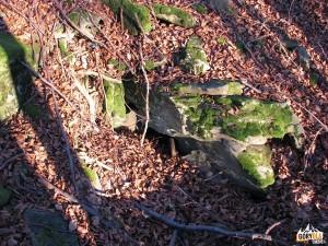 Wychodnie skalne pod szczytem Makowicy