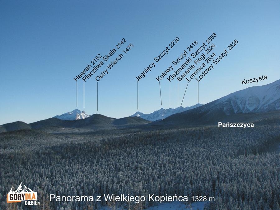 Kopieniec – panorama Tatr