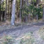 Zielony szlak na Hali Krupowej