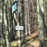 Rozwidlenie szlaków pod Halą Krupową