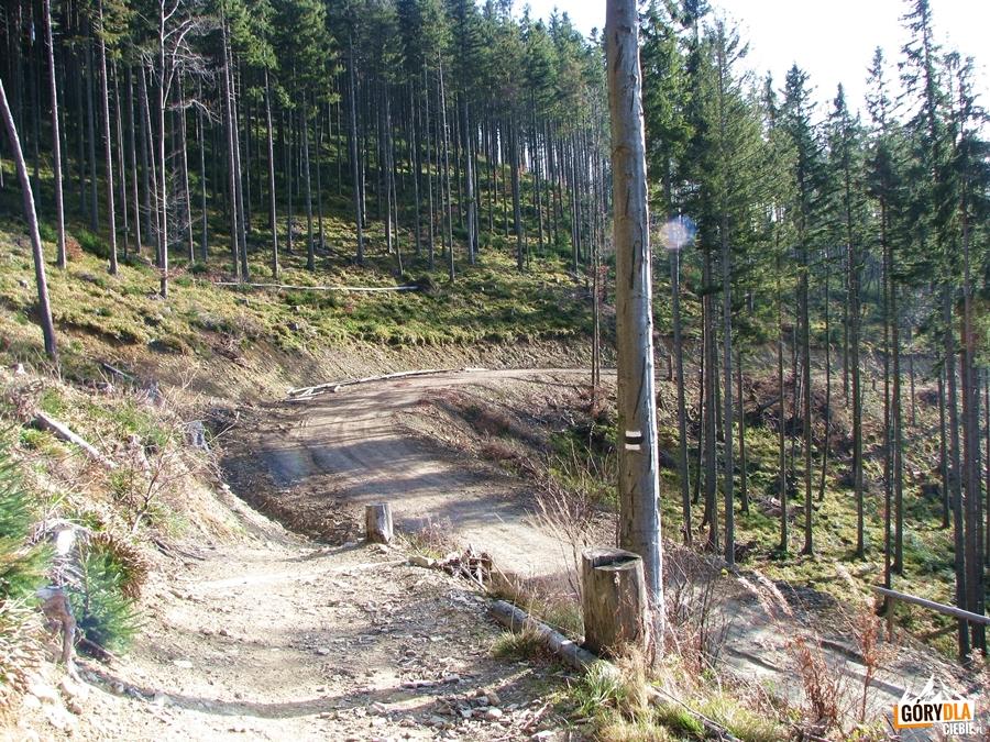 Zejście z Hali Krupowej do Sidziny - Wielka Polana