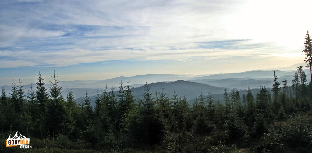 Panorama z drogi na Czyrniec