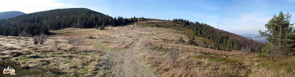 Kucałowa Przełęcz i hala Sidzińskie Pasionki