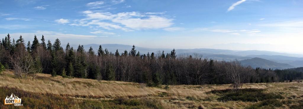 Panorama z Hali Krupowej