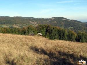 Bacówki podszczytem Przehyby (Kosarzyska) (1019 m)