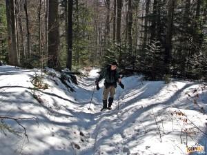 Podejście na polanę Stawieniec