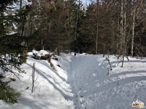 Droga na szczyt Kudłonia