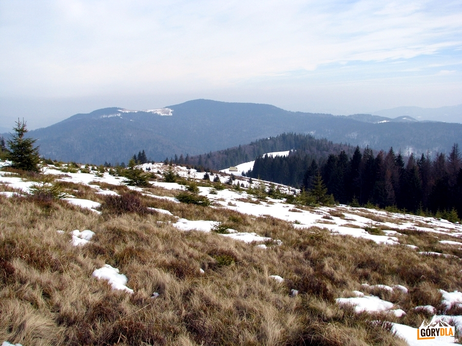 Panorama Gorca z Gorca Porębskiego