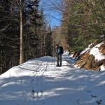 Na niebieskim szlaku w Dolinie Kamienicy