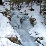 Zalodzony potok nad polaną Trusiówka