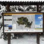 """Duża trasa narciarska """"Mogielica"""" - Polana Przysłopek"""