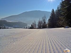 Narciarskie trasy biegowe pod Mogielicą - Zalesie