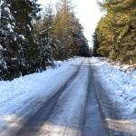 Dojazd do tras bierowych - Zalesie