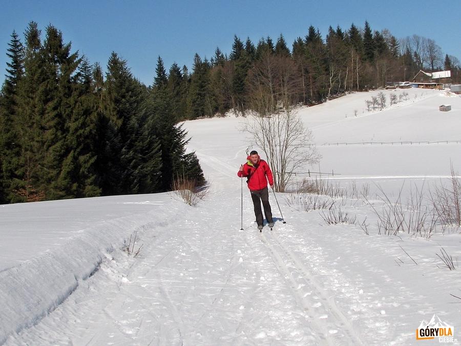 Narciarska trasa biegowa (mała) pod Mogielicą