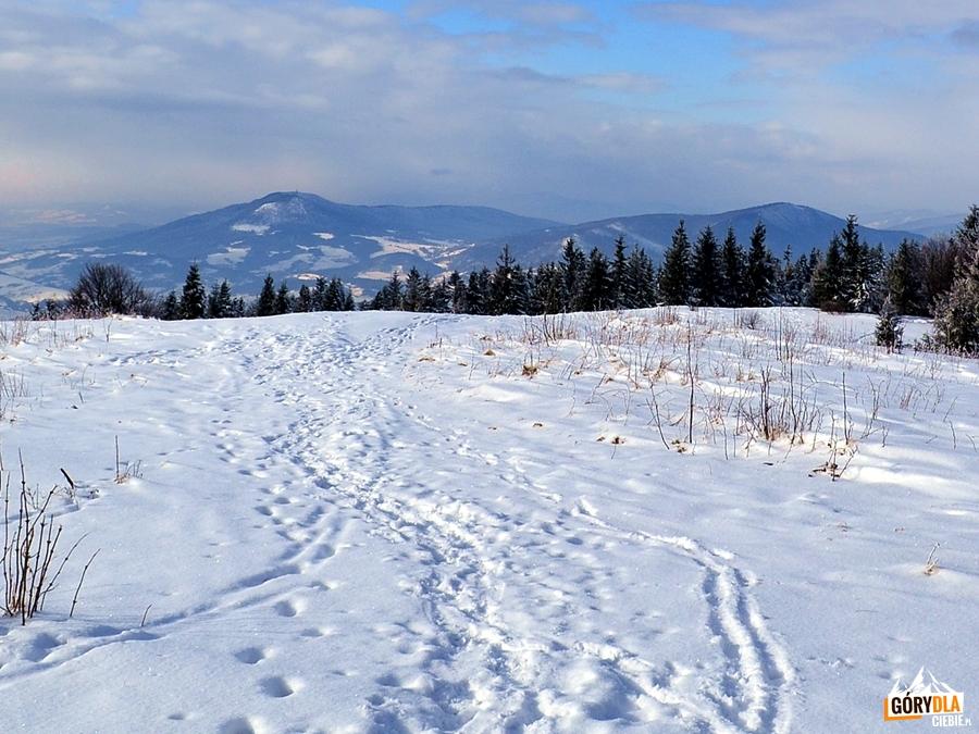 Widok z Ćwilina 1072m - Luboń Wielki i Lubogoszcz, w chmurach Babia Góra
