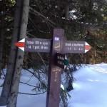 Skrzyżowanie szlaków na Obidowcu 1106 m