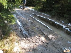 Czerwony szlak na Turbacz (nad Obidowcem)