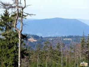 Widok spod Rozdziela na Luboń Wielki 1022 m,poniżej Tobołów 994 m