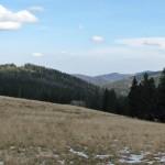Widok z Hali Turbacz na Gorc 1228 m