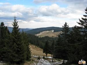 Hala Długa i Jaworzyna Kamienicka 1288 m