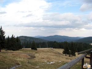 Hala Wolnica i Kudłoń 1274 m, w tle szczyt Mogielicy 1171 m