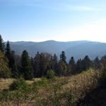 Widok w kierunku Turbacza z grani Tobołowa